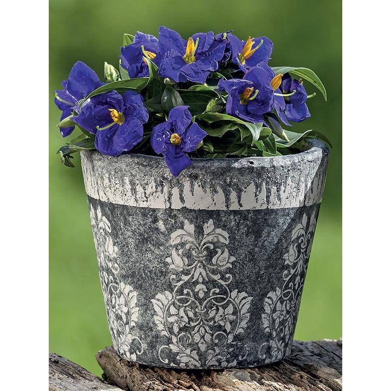 Pflanztopf Blumentopf Terrakotta schwarz - weiß 14cm - 037939 -